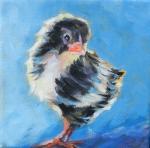 Chick-black