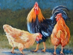 Rooster-and-two-hens