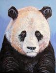 E Giant Panda