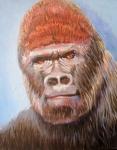 J Eastern Lowland Gorilla