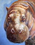 P Pigmy Hippo