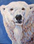 R Polar Bear